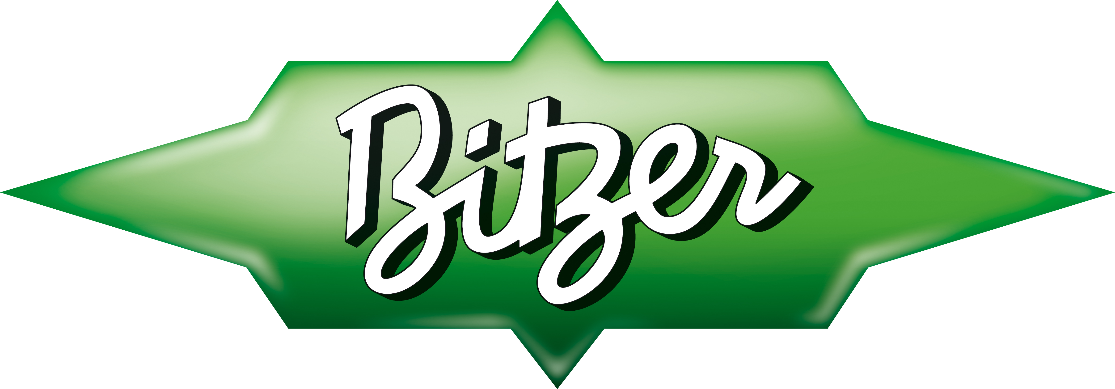 BITZER Logo 400mm XXL RGB Green Black